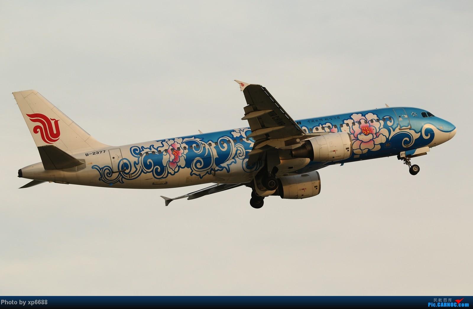 Re:[原创]萧山机场之冷暖 AIRBUS A320-200 B-2377 中国杭州萧山机场