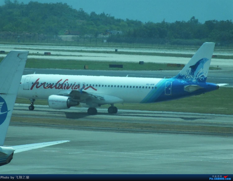 Re:[原创]马尔代夫国家航空首航CKG! AIRBUS A320-200 8Q-1AN 重庆江北国际机场