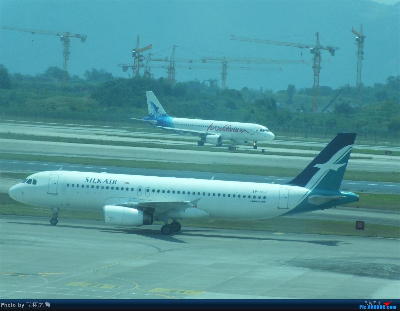 Re:[原创]CKG拍机之烈日篇(太阳当头照,坚持去拍机。汗水流进土,拍机真辛苦。) AIRBUS A320-200 9V-SLJ 重庆江北国际机场