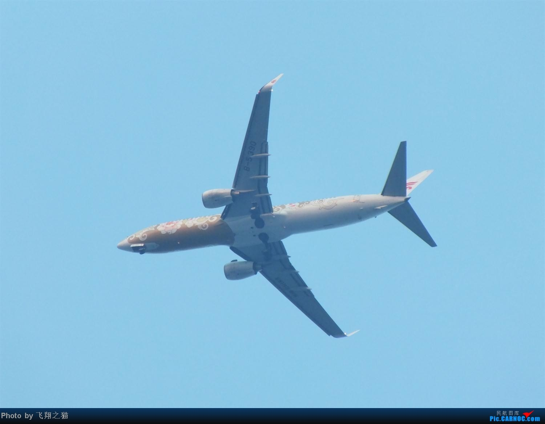 Re:[原创]CKG拍机之烈日篇(太阳当头照,坚持去拍机。汗水流进土,拍机真辛苦。) BOEING 737-800 B-5390 重庆江北国际机场