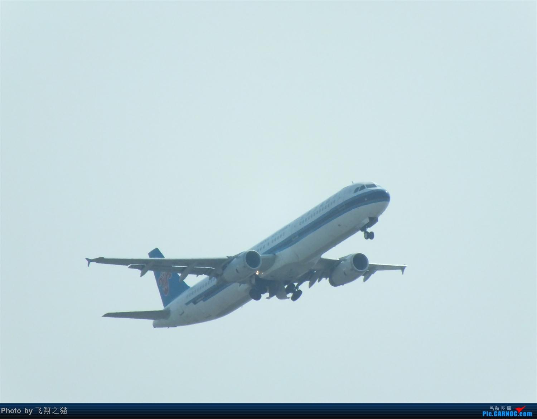 Re:[原创]CKG拍机之烈日篇(太阳当头照,坚持去拍机。汗水流进土,拍机真辛苦。) AIRBUS A321  重庆江北国际机场