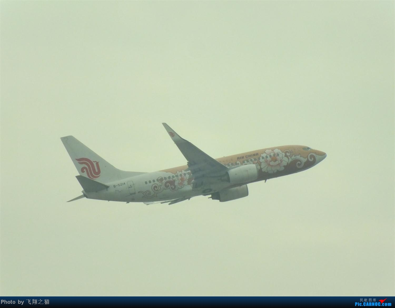 Re:[原创]CKG拍机之盛夏篇(独自在家,闲着没事,拿起相机,又去拍机) BOEING 737-700 B-5214 重庆江北国际机场