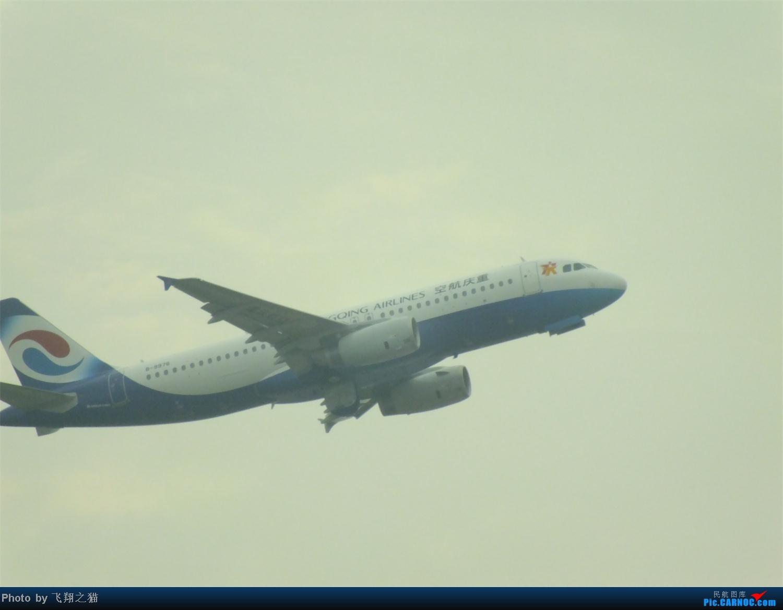Re:[原创]CKG拍机之盛夏篇(独自在家,闲着没事,拿起相机,又去拍机) AIRBUS A320-200 B-9976 重庆江北国际机场