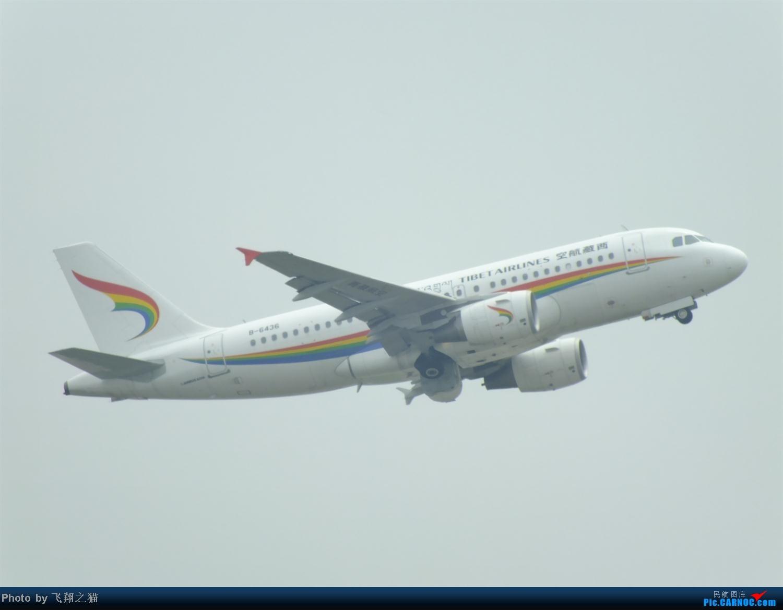 Re:[原创]CKG拍机之盛夏篇(独自在家,闲着没事,拿起相机,又去拍机) AIRBUS A319 B-6436 重庆江北国际机场