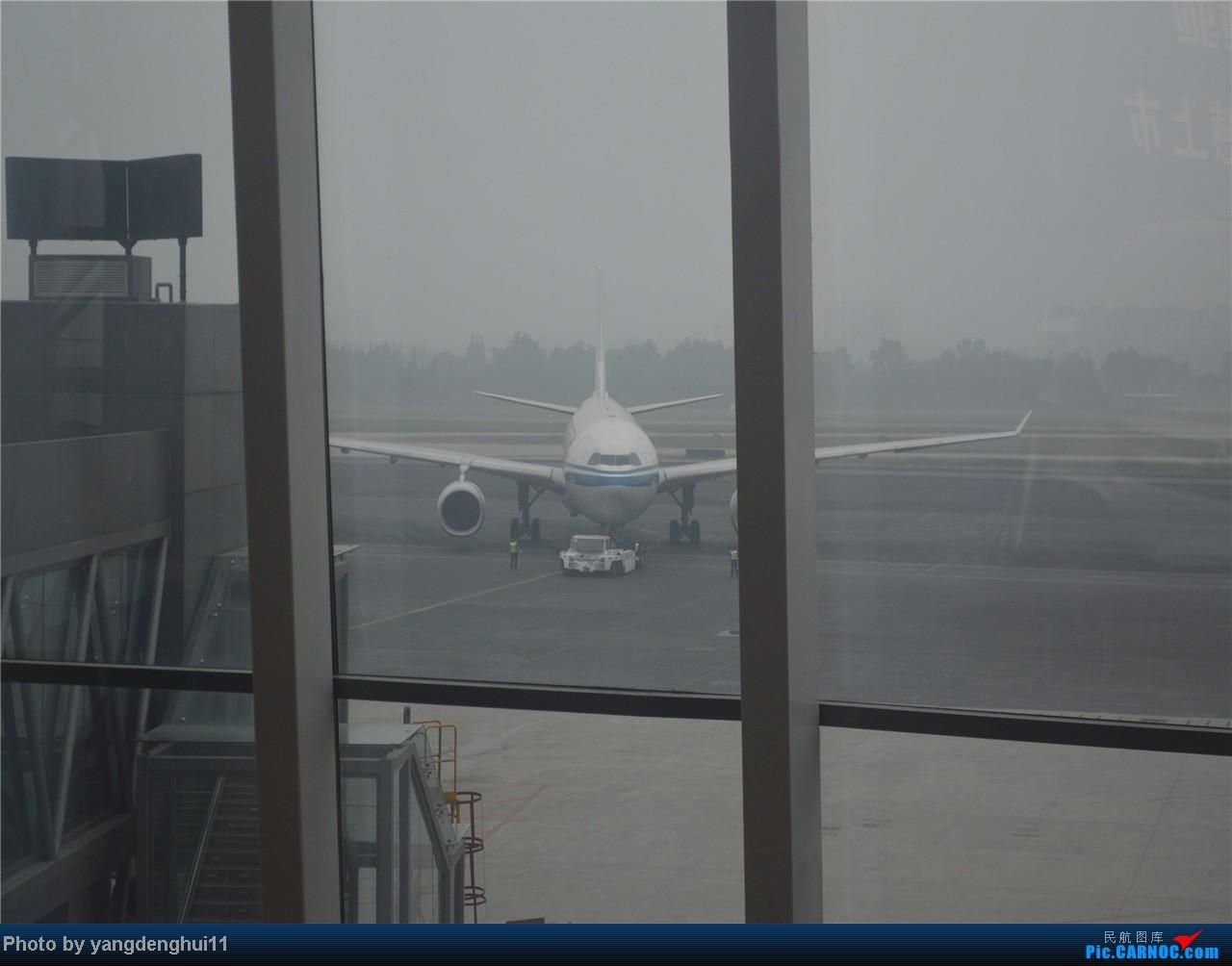 Re:[原创]暑假出游:CTU---PEK---CTU,北京巧遇国航红、蓝凤凰。(上) AIRBUS A330  中国成都双流机场