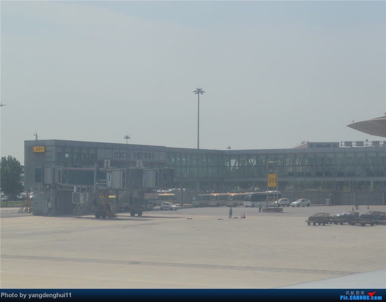 Re:[原创]暑假出游:CTU---PEK---CTU,北京巧遇国航红、蓝凤凰。(上) BOEING 777-200 B-2060 中国北京首都机场 中国北京首都机场
