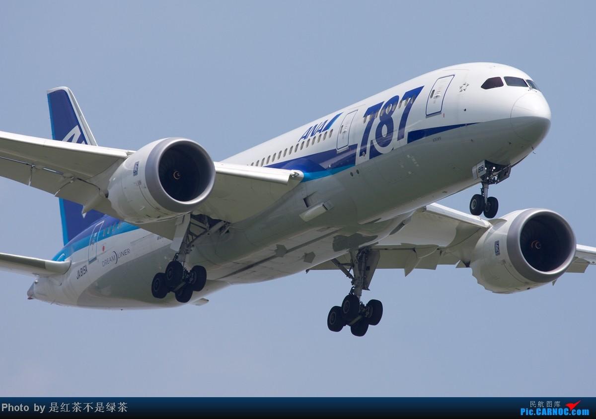 [原创]【红茶拍机】顶着上海40度的高温,6天之内去了三次PVG,我是不是疯了!当然回报不错! BOEING 787 JA815A 中国上海浦东机场