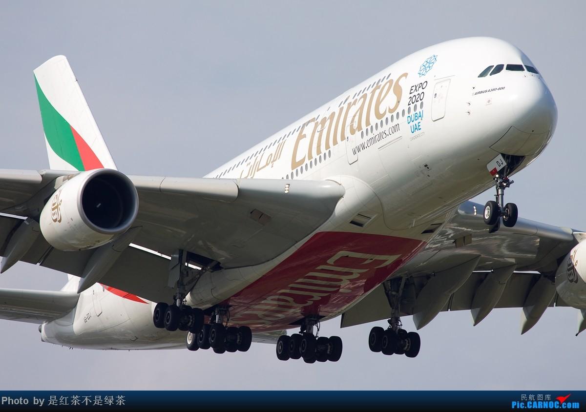 Re:[原创]【红茶拍机】顶着上海40度的高温,6天之内去了三次PVG,我是不是疯了!当然回报不错! AIRBUS A380 A6-EDJ 中国上海浦东机场