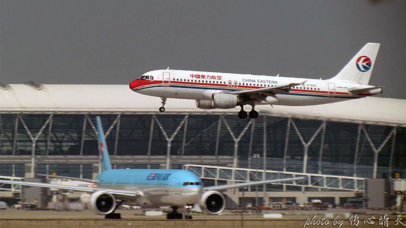 Re:[原创]PVG战40度高温,站在4跑外海堤上看2跑飞机的孩子伤不起,电线杆子很无奈却又可以带来不一样的东西。。。 AIRBUS A320-200 B-6016 中国上海浦东机场