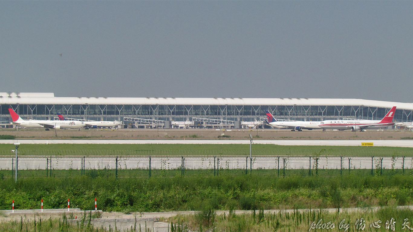 Re:[原创]PVG战40度高温,站在4跑外海堤上看2跑飞机的孩子伤不起,电线杆子很无奈却又可以带来不一样的东西。。。 BOEING 737-800 B-5553 中国上海浦东机场 中国上海浦东机场
