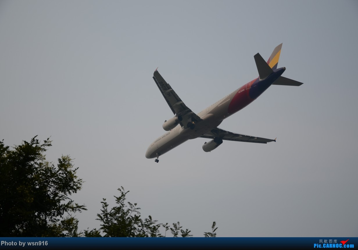 Re:[原创]8月10日PEK01跑道拍机 AIRBUS A321 HL8266 PEK 01
