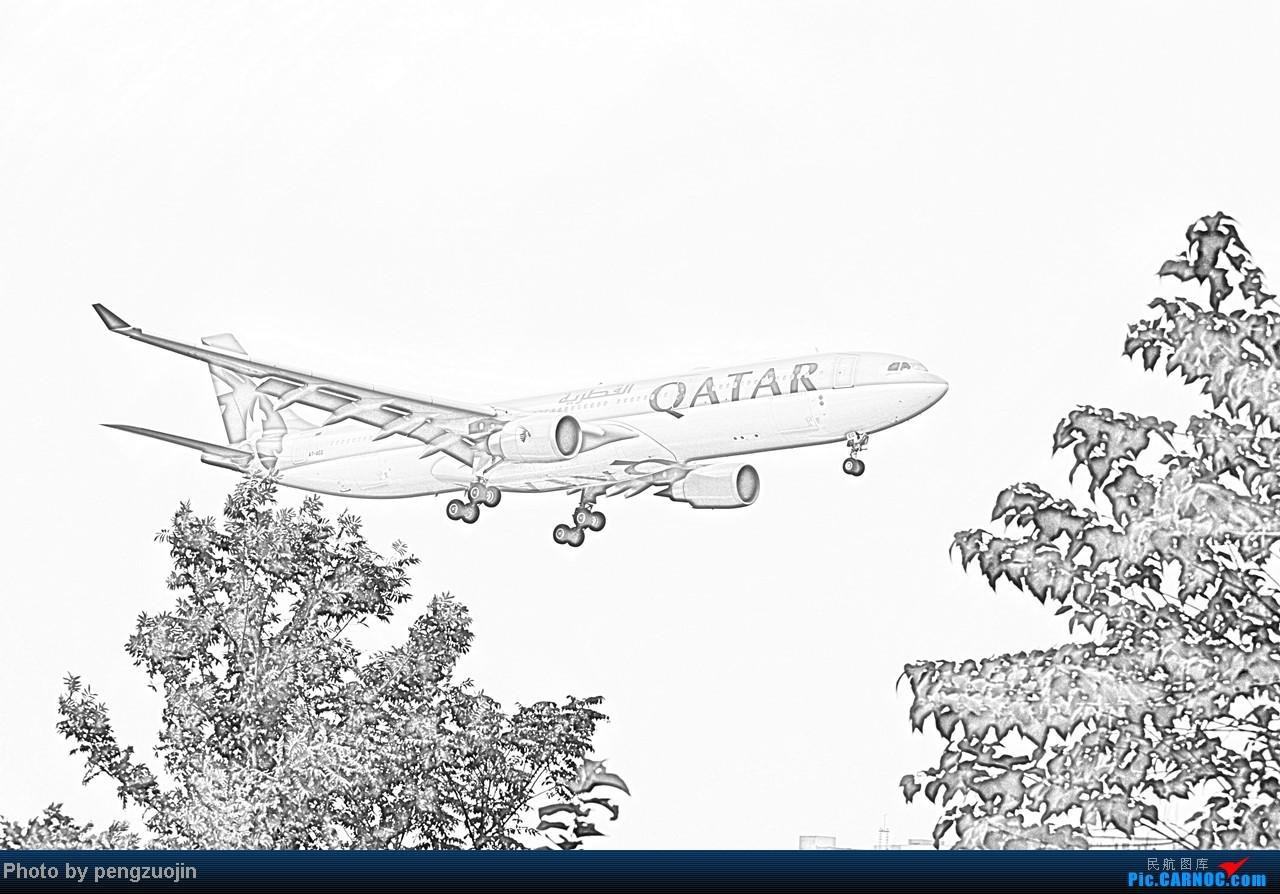 Re:[原创]【成都飞友会】悍马送上QR+KL+D7的不同感覺 AIRBUS A330-300 A7-AEG