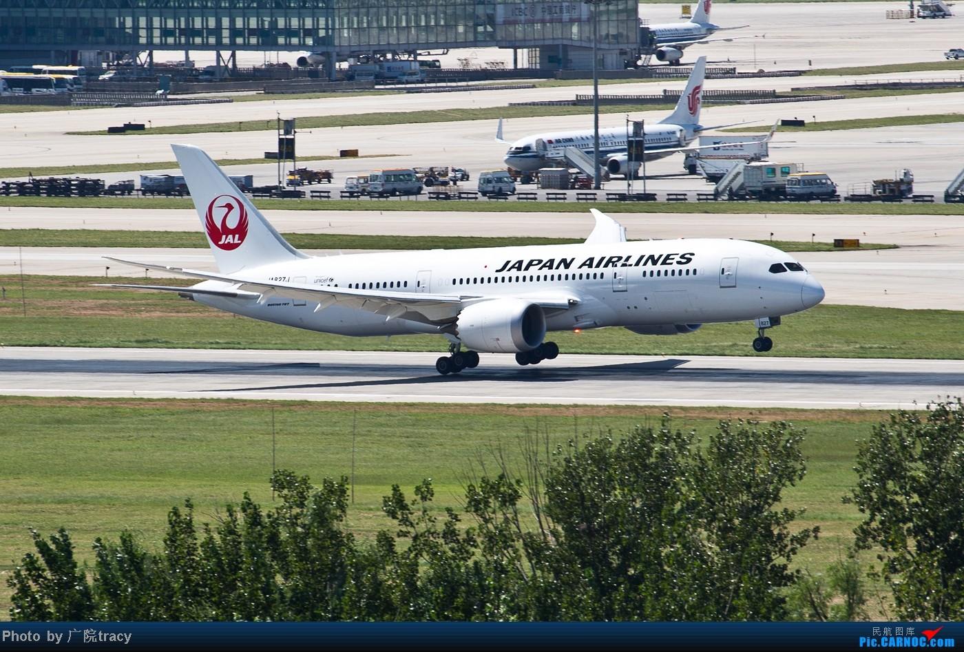 Re:[原创]★ ★ ★ ★ ★目前已经拍到了9家航空公司的波音787梦想客机★ ★ ★ ★ ★ BOEING 787-8 JA827J 中国北京首都机场