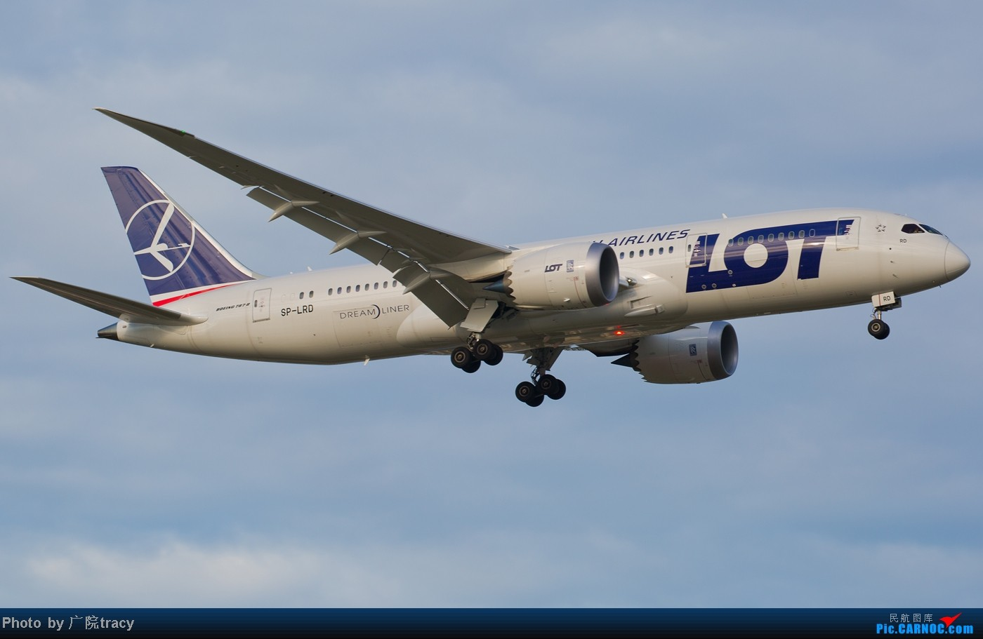 Re:[原创]★ ★ ★ ★ ★目前已经拍到了9家航空公司的波音787梦想客机★ ★ ★ ★ ★ BOEING 787-8 SP-LRD 中国北京首都机场