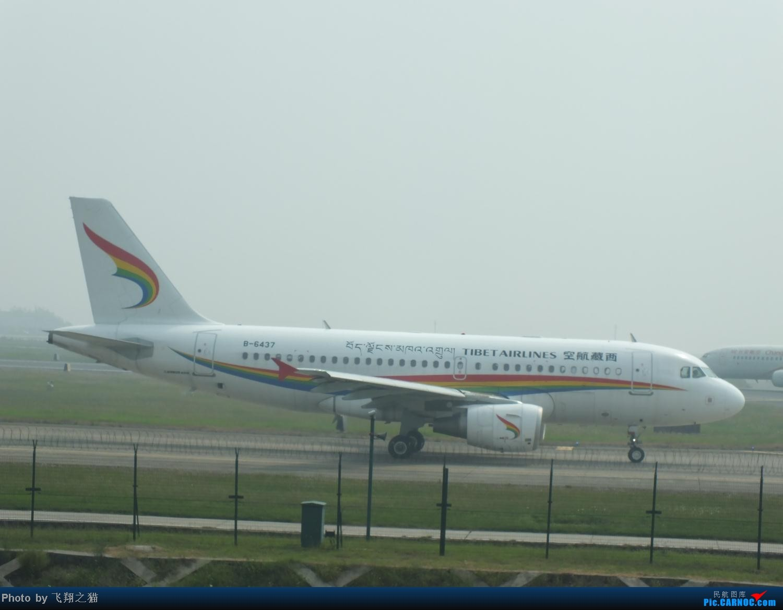 Re:[原创]CKG拍机之(中秋小长假后重庆江北国际机场平淡的一天) AIRBUS A319 B-6437 重庆江北国际机场