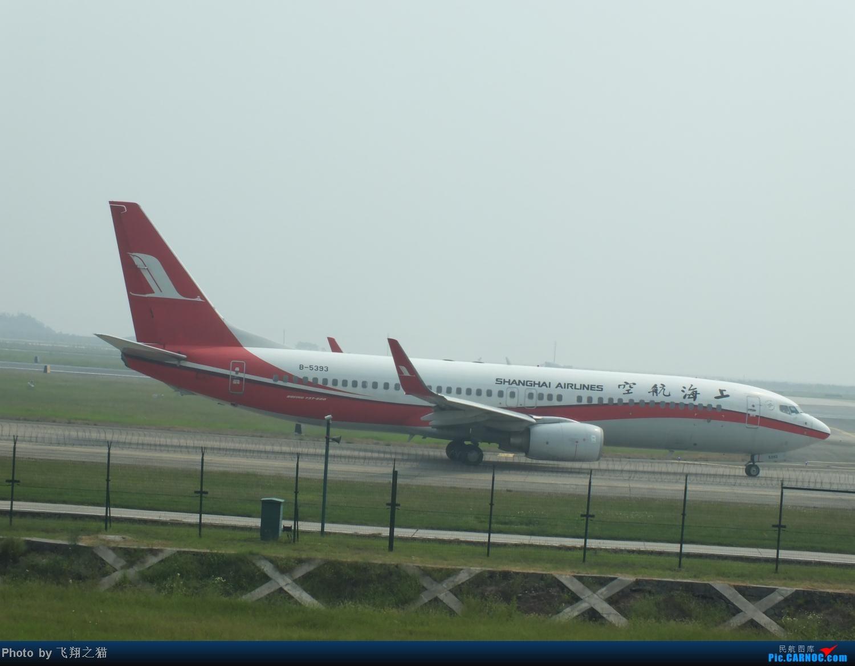 Re:[原创]CKG拍机之(中秋小长假后重庆江北国际机场平淡的一天) BOEING 737-800 B-5393 重庆江北国际机场