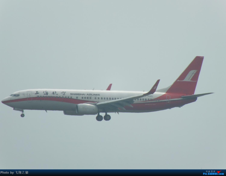 Re:[原创]今天CKG交作业不多就这些货。 BOEING 737-800 B-5523 重庆江北国际机场