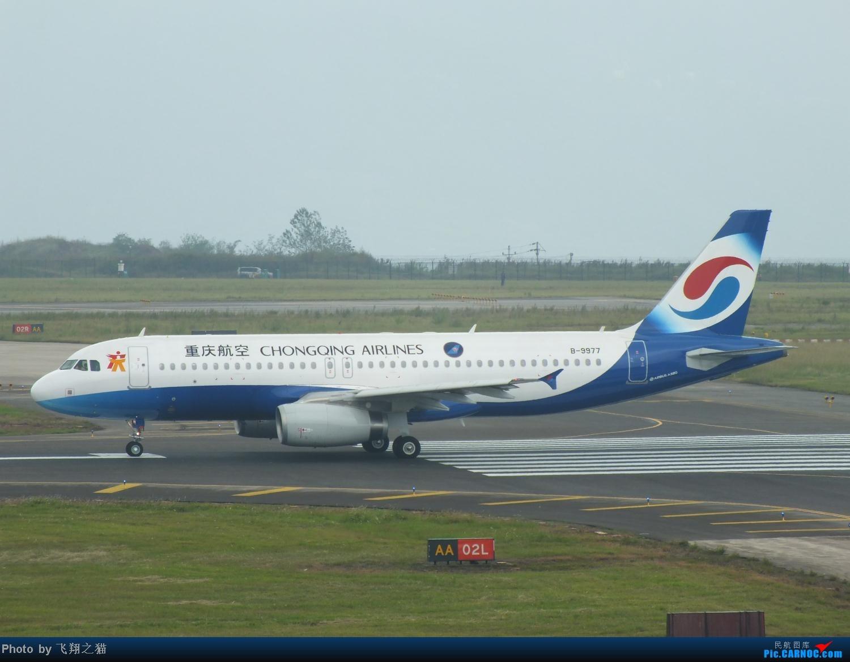 Re:[原创]今天CKG交作业不多就这些货。 AIRBUS A320-200 B-9977 重庆江北国际机场