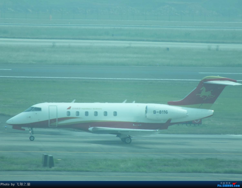 Re:[原创]国庆最后一天带小跟班在CKG战斗 BOMBARDIER (CANADAIR) CL-300 B-8116 重庆江北国际机场
