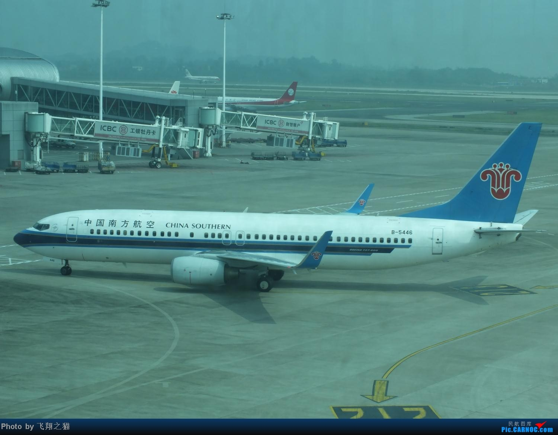 Re:[原创]国庆最后一天带小跟班在CKG战斗 BOEING 737-800 B-5446 重庆江北国际机场