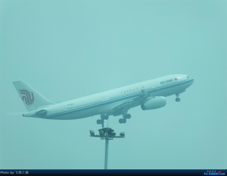 Re:[原创]国庆最后一天带小跟班在CKG战斗 AIRBUS A330-200 B-6113 重庆江北国际机场