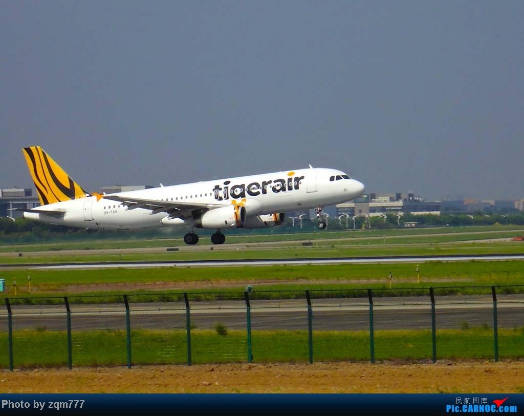 Re:[原创]【777之拍机贴】无意中发现升到380了,清理一下库存,顺便庆祝一下 AIRBUS A320-200 9V-TAV
