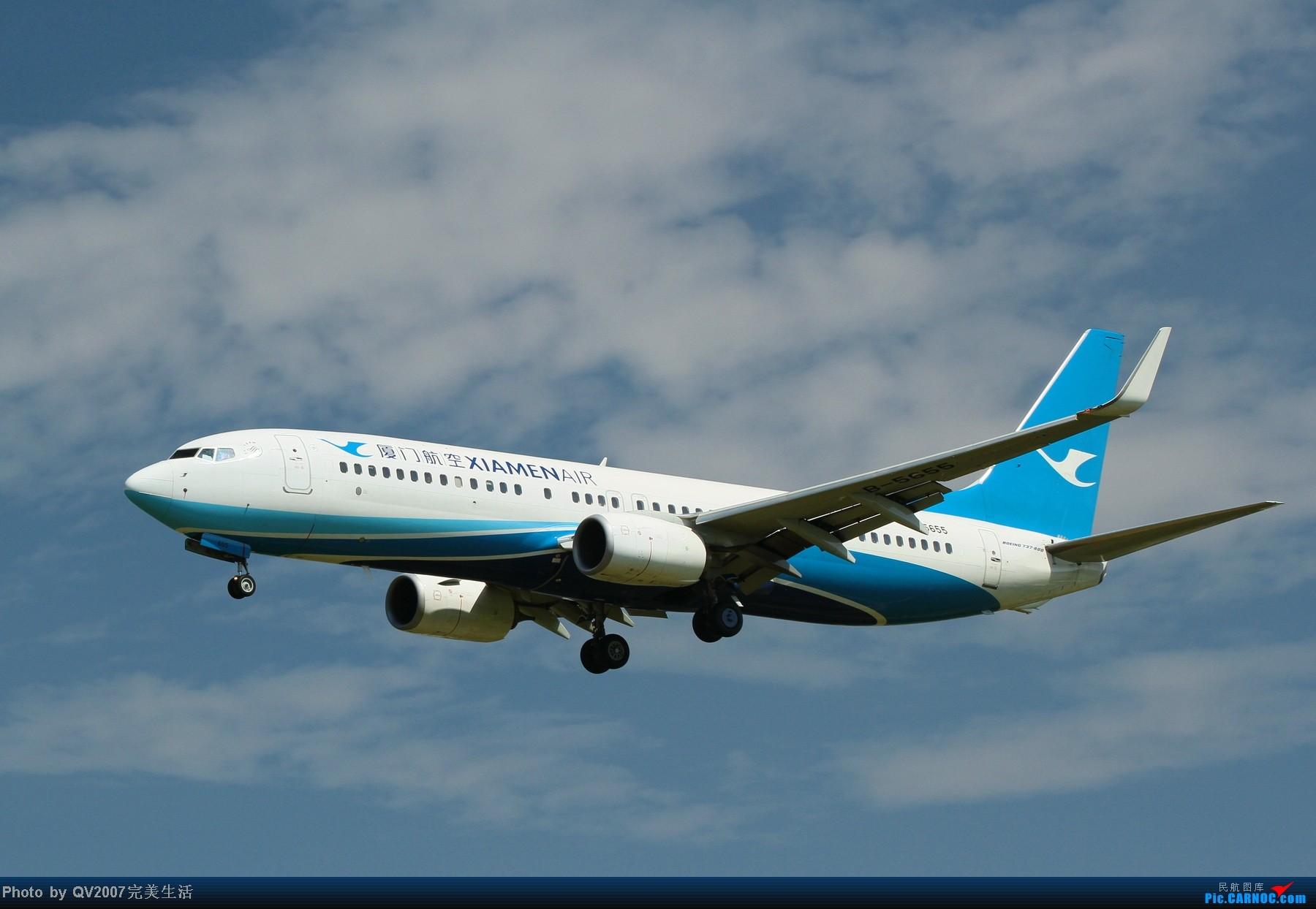 [原创]厦航新涂装 BOEING 737-800 B-5655 中国北京首都机场