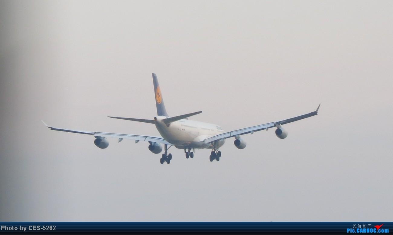 Re:[原创]国庆TAO很热闹哈,临沂飞友流窜TAO记 内有少见滴LH343 A340-300 D-AIGD 中国青岛流亭机场