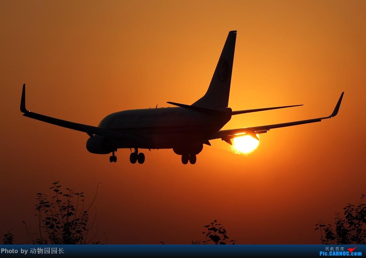 [原创]【CASG】★★★秋日的午后和傍晚~!——桃仙24头的一天两拍!★★★ BOEING 737-700 B-5255 中国沈阳桃仙机场