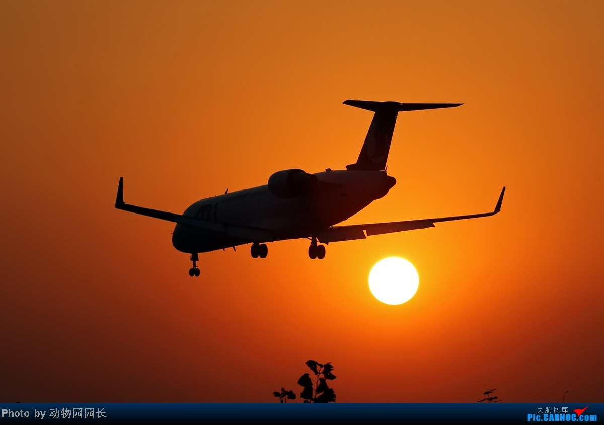 Re:[原创]【CASG】★★★秋日的午后和傍晚~!——桃仙24头的一天两拍!★★★ BOMBARDIER (CANADAIR) CRJ-200 B-3007 中国沈阳桃仙机场