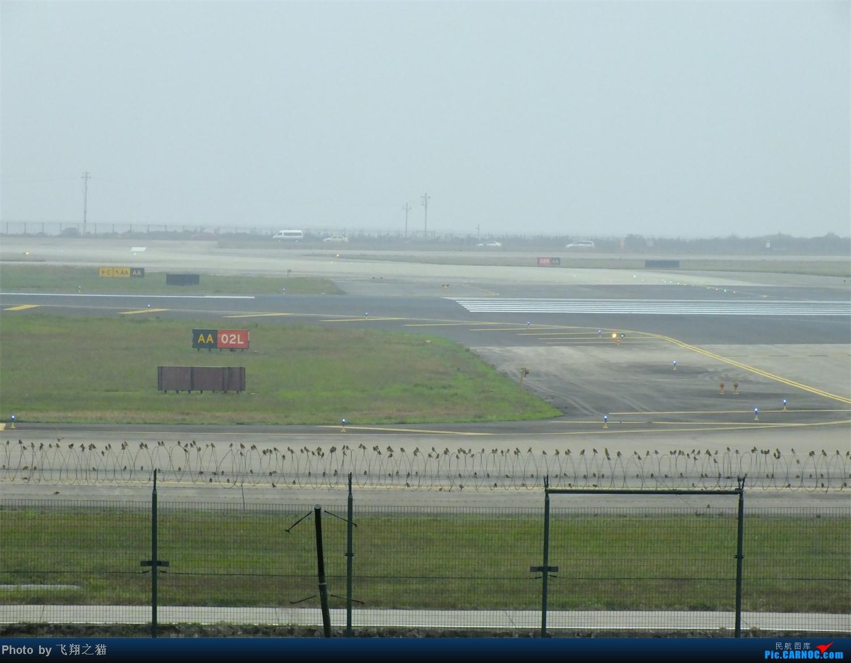 Re:[原创]CKG周末拍机(世博号,吉祥浦东号,大美青海,几架9字头新机机,重磅泰微笑首航重庆)    中国重庆江北机场