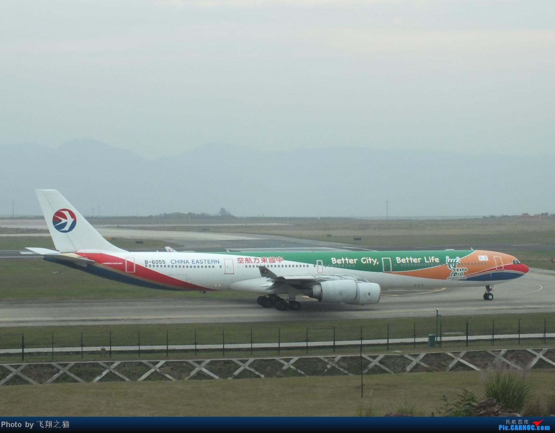 Re:[原创]CKG周末拍机(世博号,吉祥浦东号,大美青海,几架9字头新机机,重磅泰微笑首航重庆) AIRBUS A340-600 B-6055 重庆江北国际机场