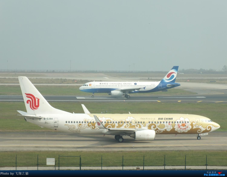 Re:[原创]CKG周末拍机(世博号,吉祥浦东号,大美青海,几架9字头新机机,重磅泰微笑首航重庆) BOEING 737-800 B-5390 重庆江北国际机场