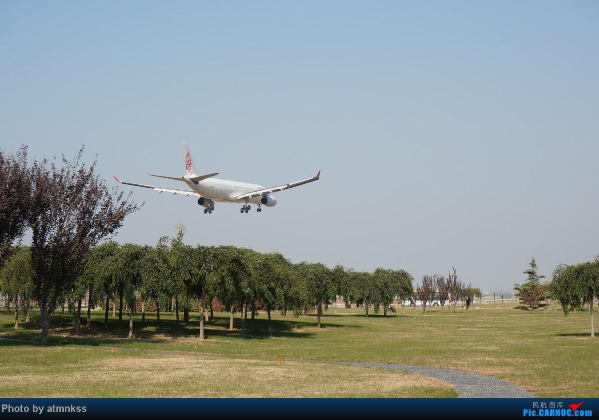 Re:[原创][Atm]10月26八卦台+停车场拍机 终于来到传说中的八卦台 国航两架大猩猩 AIRBUS A330-300 B-HYJ 中国北京首都机场