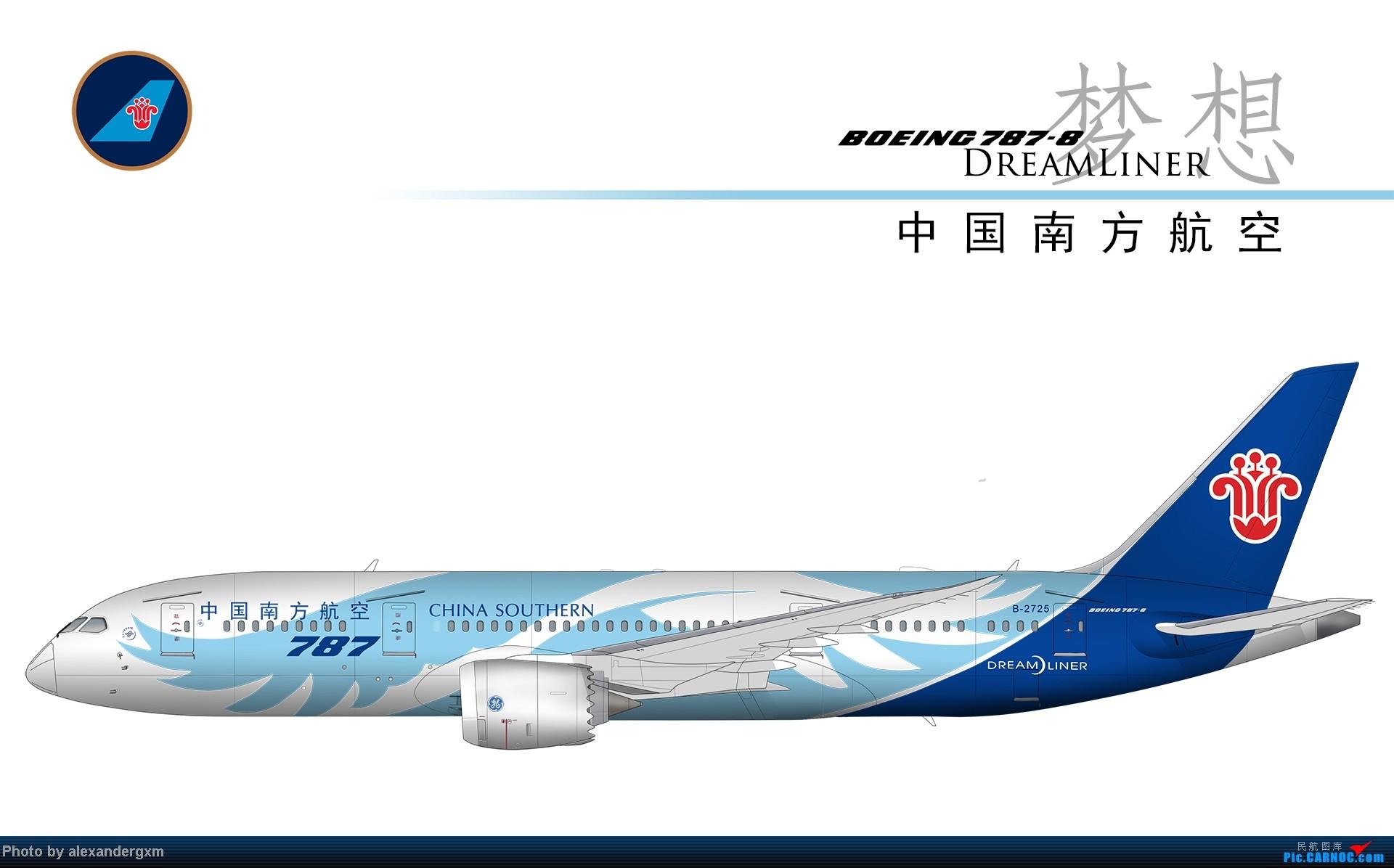 Re:[原创]发一些自己业余画的一些飞机啦~大部分侧视图~ BOEING 787 B-2725