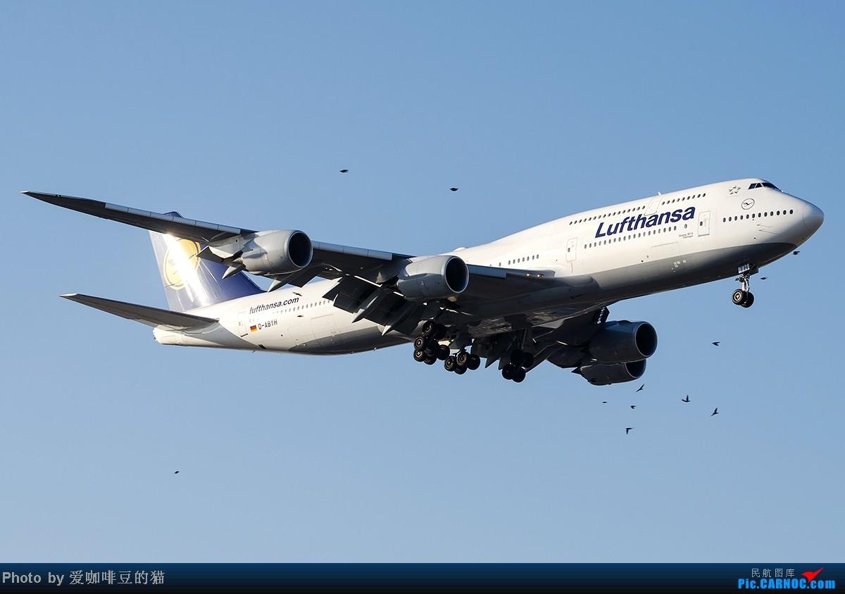 癹.!��'�aby.�9d�y�hyil�..���_re:最近拍的些飞机 boeing 747-8 d-abyh 中国北京首都机场