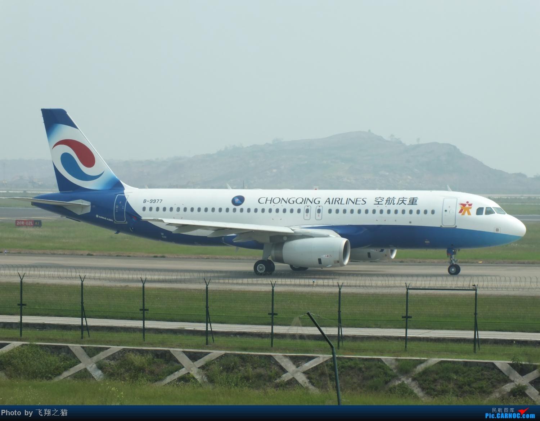 Re:[原创]我在CKG拍到的9字头新机,清一色的空客系列。 AIRBUS A320-200 B-9977 重庆江北国际机场