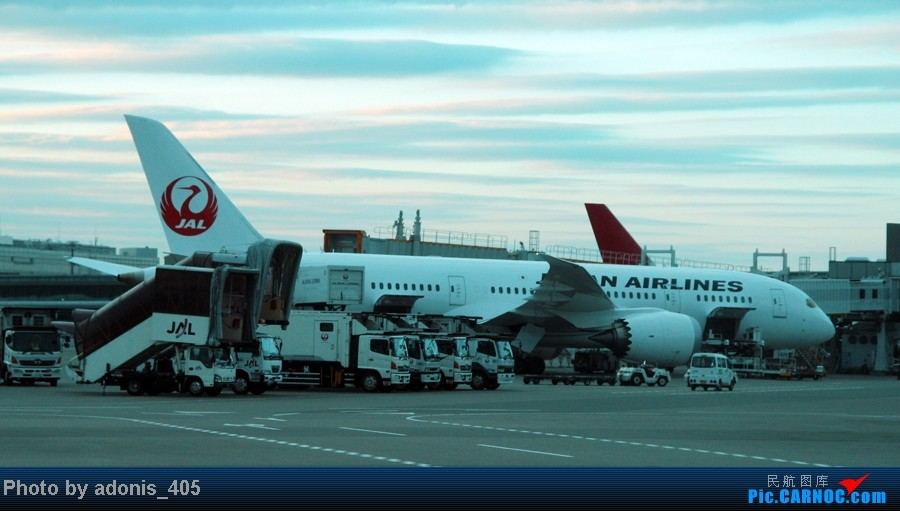 Re:[原创]北海道新千岁--东京成田机场 BOEING 787  东京成田机场