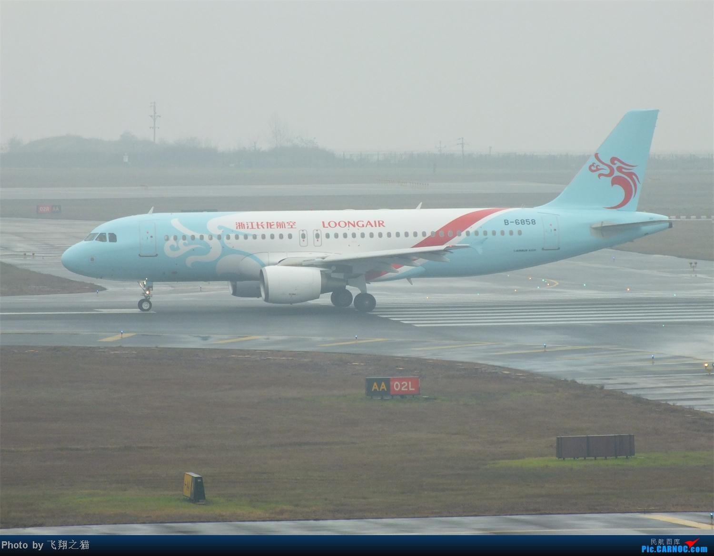 Re:[原创]这真的是2013最后一拍了(CKG年末压轴大戏浙江长龙航空首航重庆) AIRBUS A320-200 B-6858 重庆江北国际机场