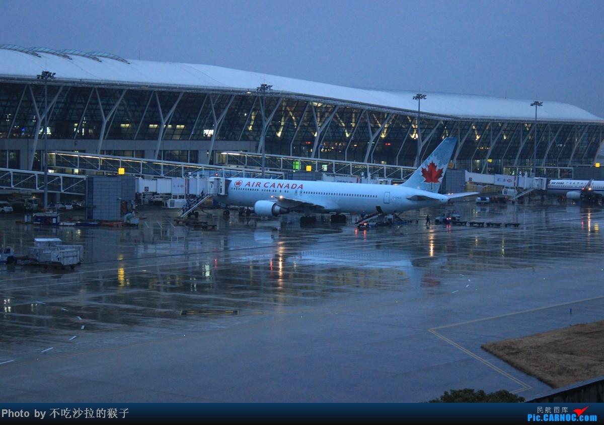 上海浦东国际机场官网_上海浦东机场到达航班查询_