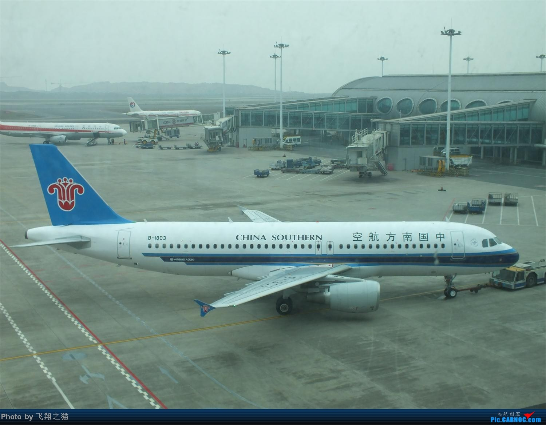 Re:CKG春运第三辑(西部1817,南航1921,1803) AIRBUS A320-200 B-1803 重庆江北国际机场