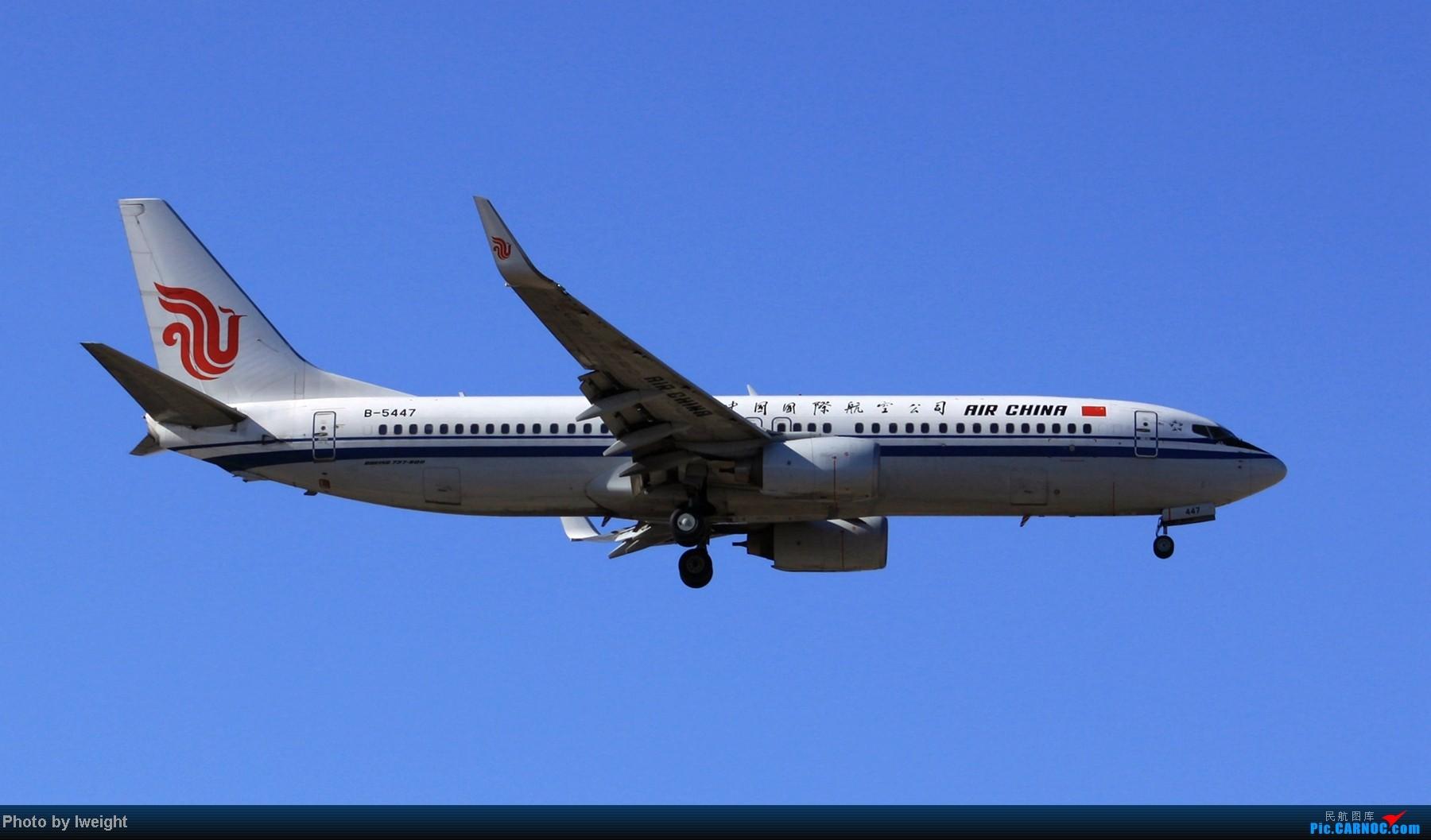Re:[原创]春节期间首都机场拍机汇报 BOEING 737-800 B-5447 中国北京首都机场