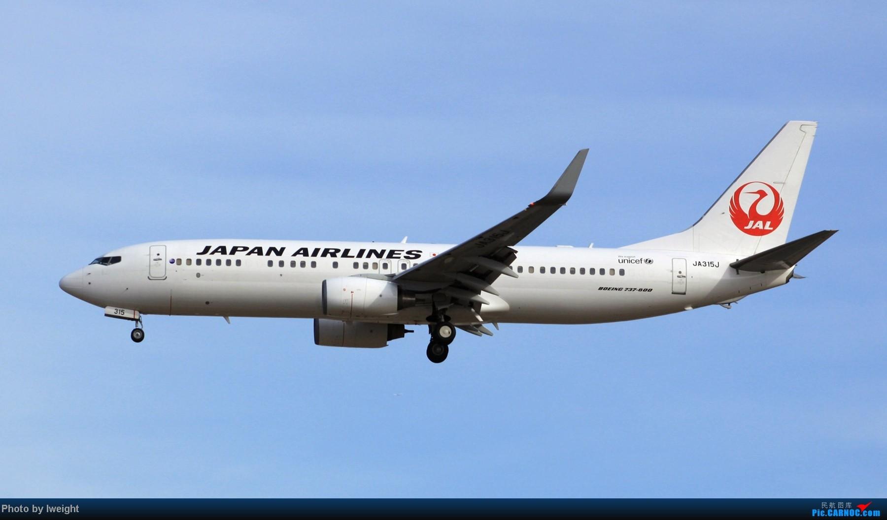 Re:[原创]春节期间首都机场拍机汇报 BOEING 737-800 JA315J 中国北京首都机场
