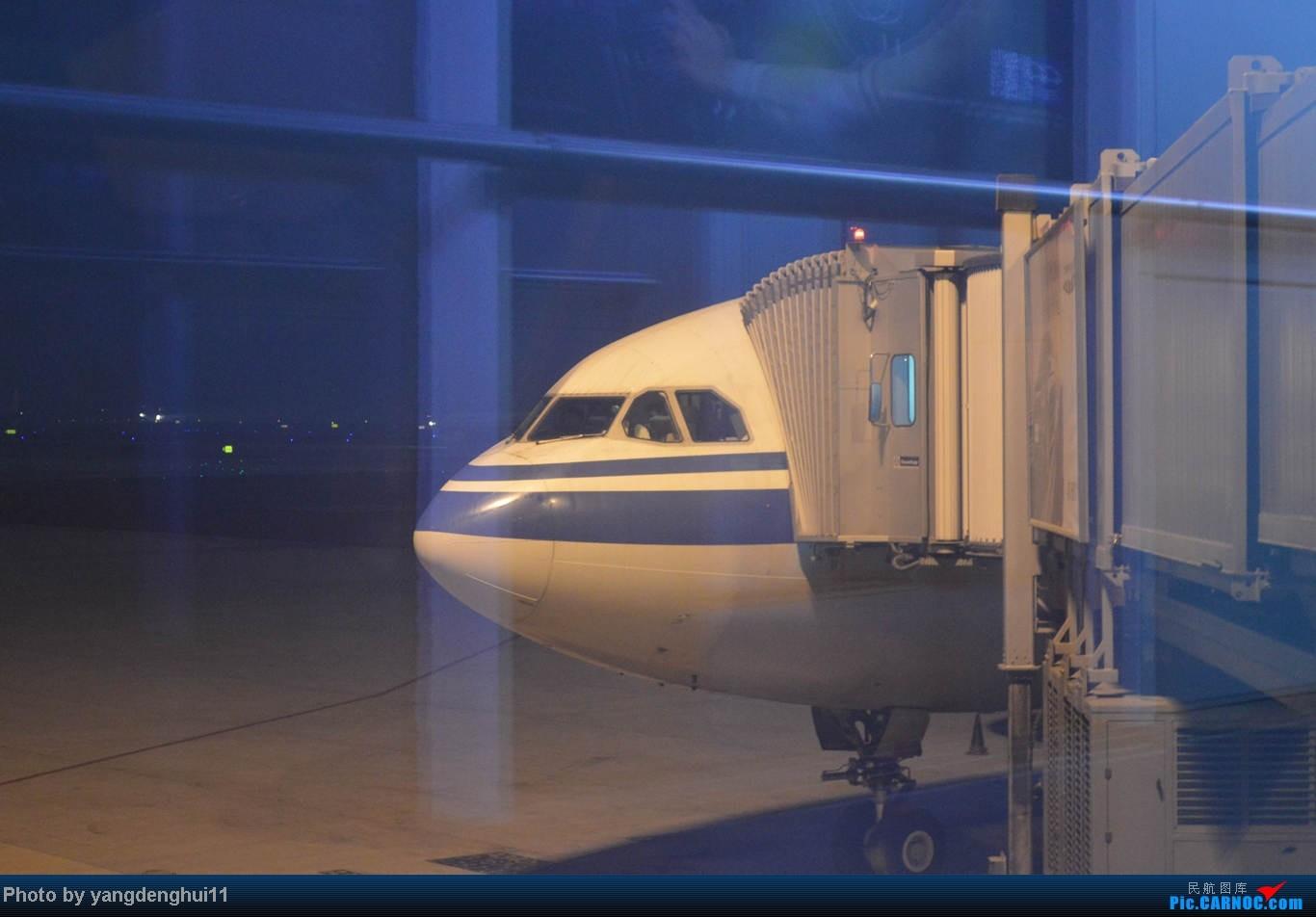 Re:[原创]春运帖 成都--上海虹桥--虹桥站--鳌江站 遇蓝凤凰,梦想之翼 AIRBUS A330-200 B-6081 中国成都双流机场