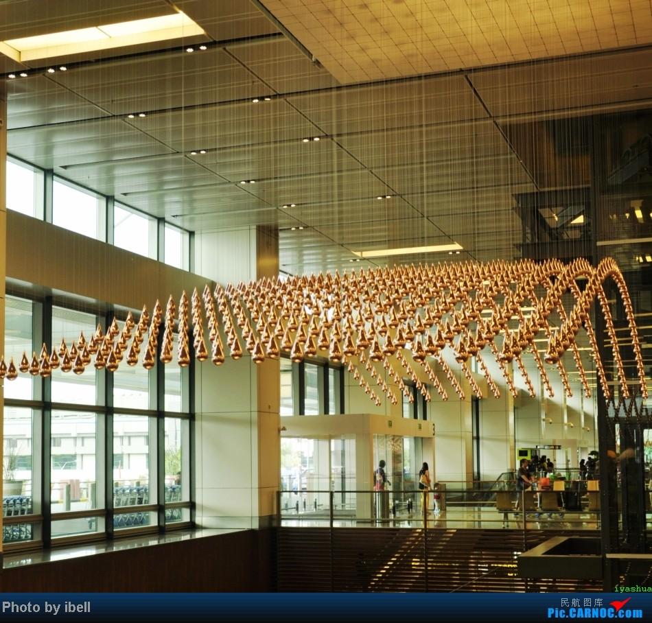 [原创]【牙刷游记之七】SIN-HKG-CTU,国泰+港龙带我回国与家人共度2014马年春节!(猜飞机活动已结束,答案第104-106楼,,祝飞友们马到功成!)    新加坡樟宜机场