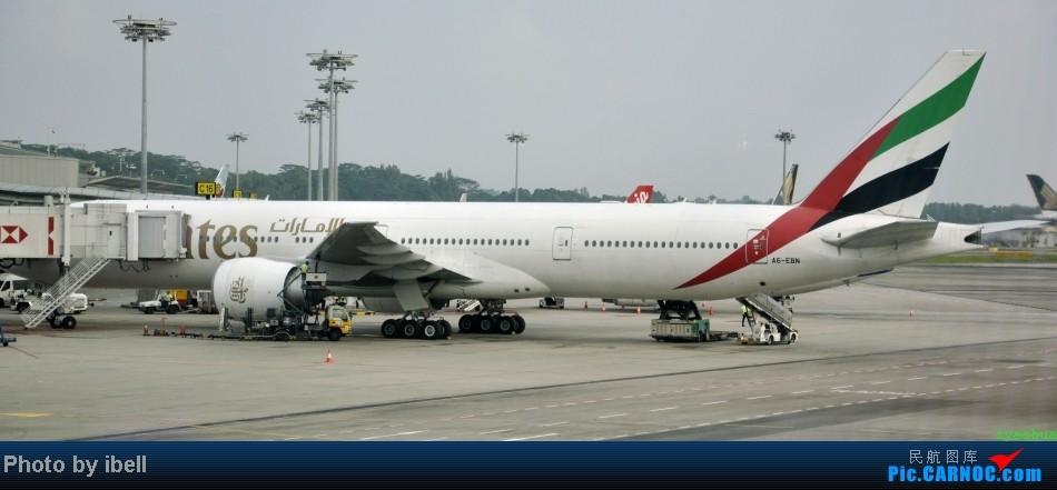Re:[原创]【牙刷游记之七】SIN-HKG-CTU,国泰+港龙带我回国与家人共度2014马年春节!(有奖猜飞机,祝飞友们马到功成!) BOEING 777-36N/ER A6-EBN 新加坡樟宜机场