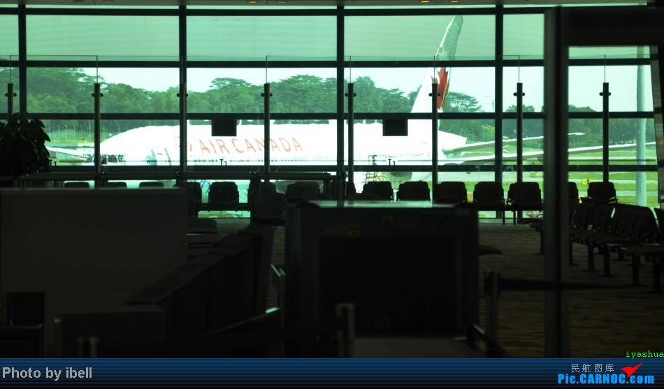 Re:[原创]【牙刷游记之七】SIN-HKG-CTU,国泰+港龙带我回国与家人共度2014马年春节!(有奖猜飞机,祝飞友们马到功成!) AIRBUS A330-300 B-6513 新加坡樟宜机场 新加坡樟宜机场
