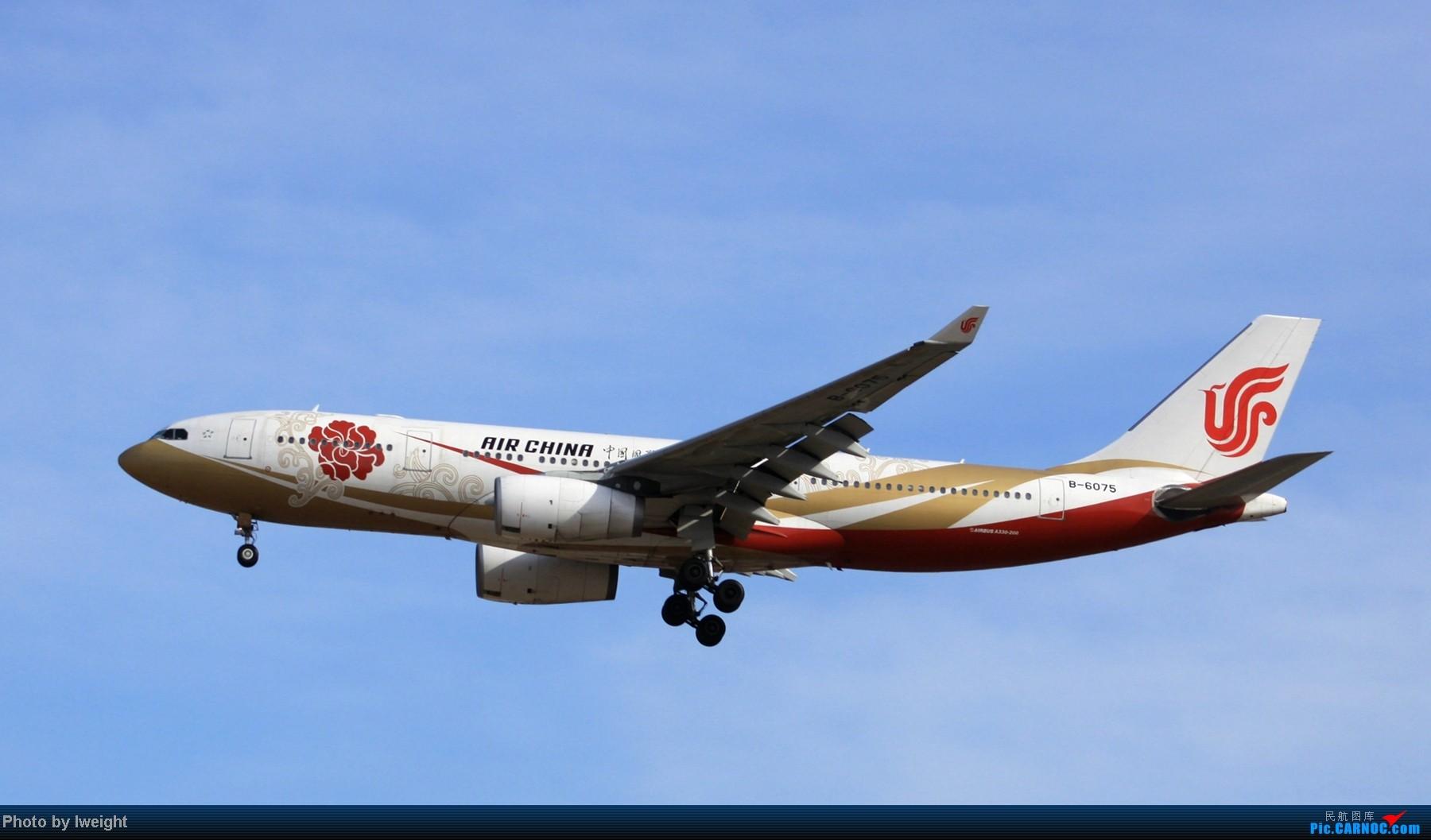 Re:[原创]春节期间首都机场拍机汇报 AIRBUS A330-200 B-6075 中国北京首都机场