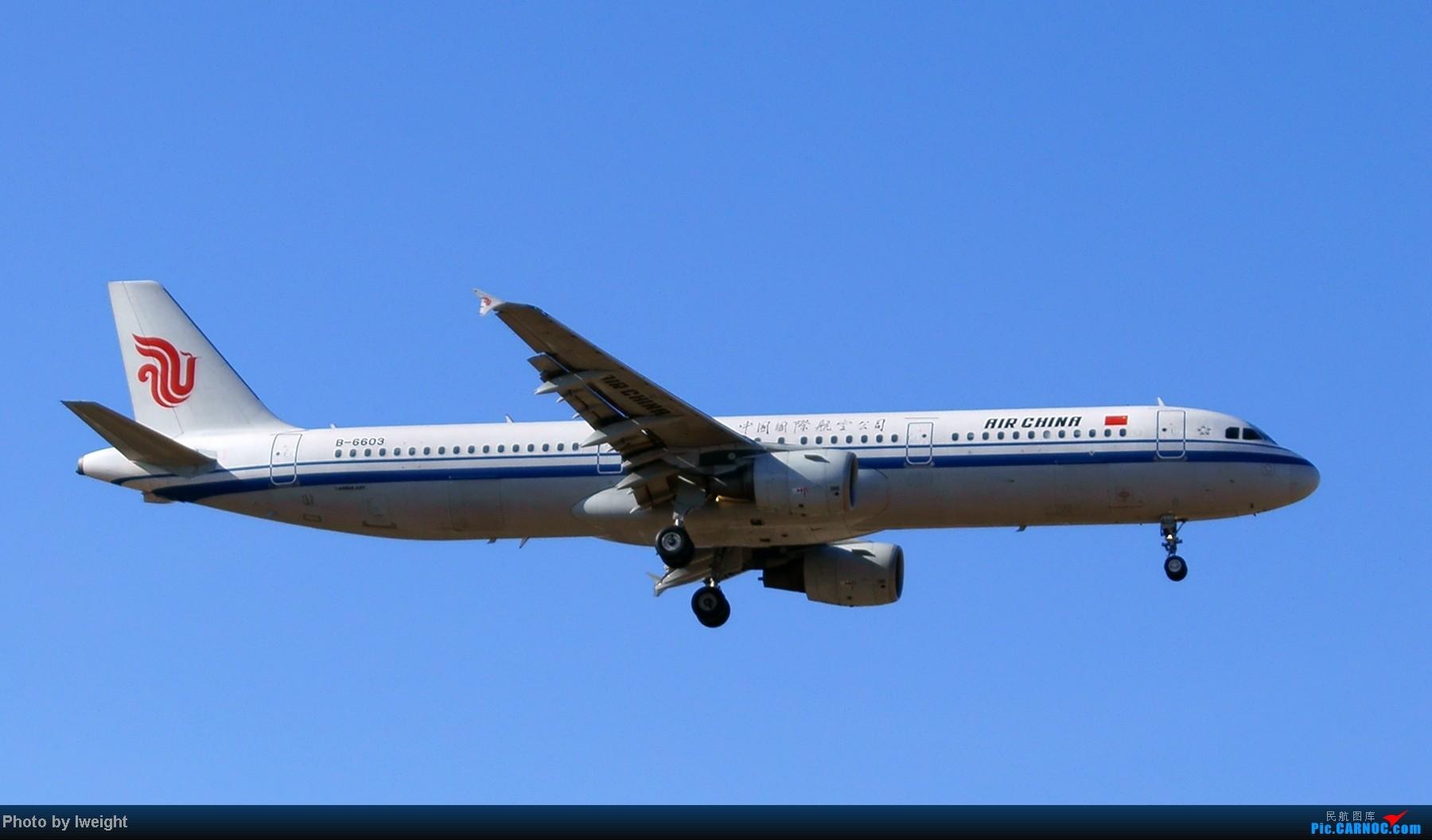Re:[原创]春节期间首都机场拍机汇报 AIRBUS A321-200 B-6603 中国北京首都机场