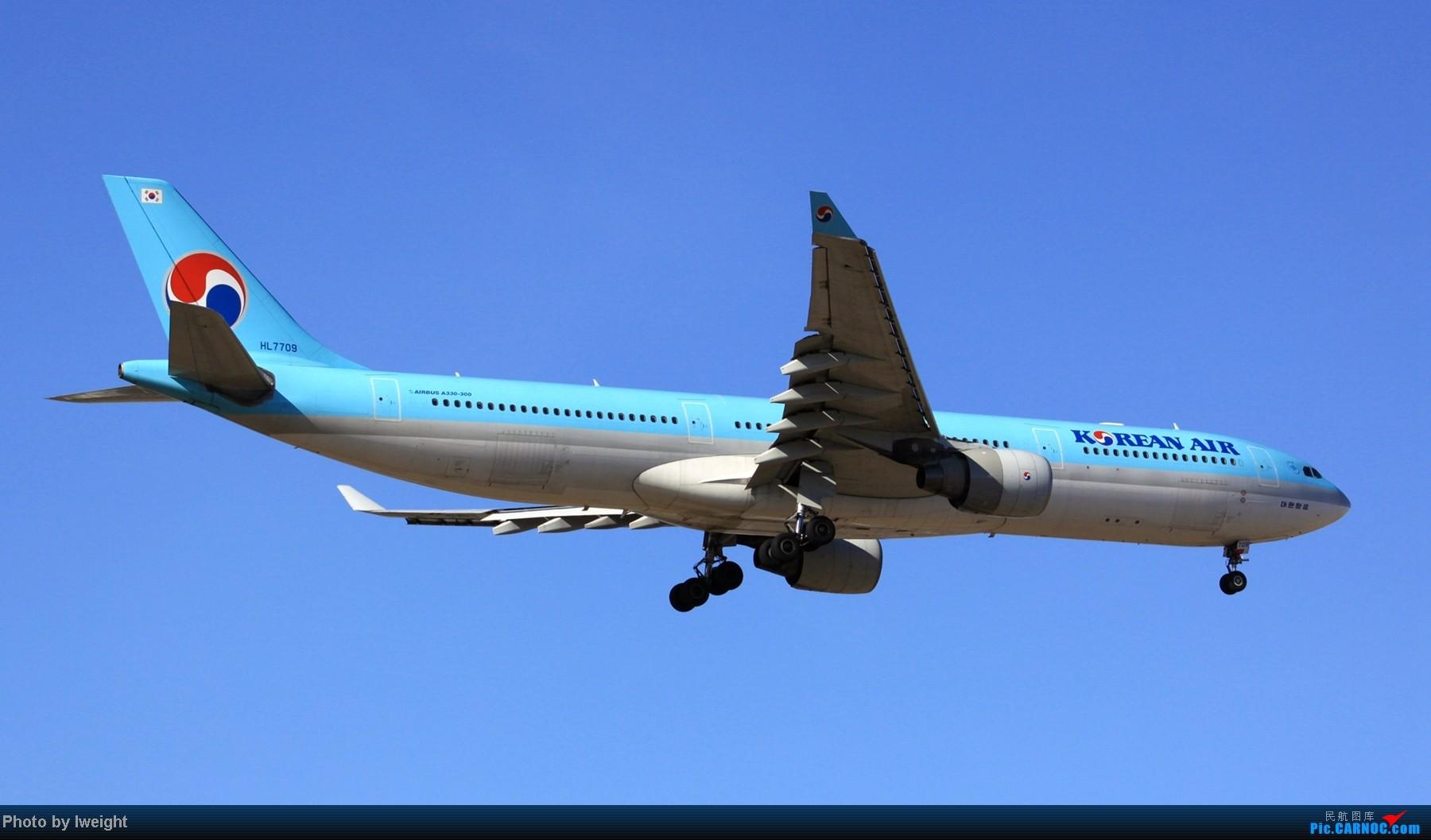 Re:[原创]春节期间首都机场拍机汇报 AIRBUS A330-300 HL7709 中国北京首都机场